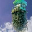 hydroponics-start-5