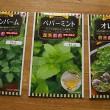 herb-seeds-1