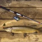 アメリカの雄大な自然の中でのんびり釣りできるフィッシングシミュレーター Fishing Planet