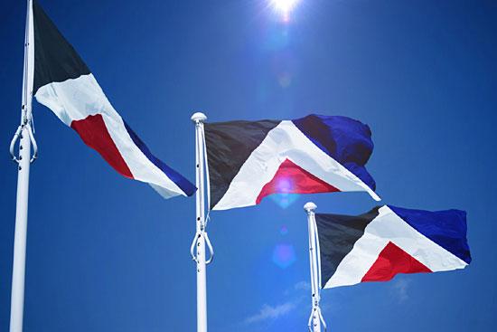 zealand-flag-design-6