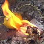 レモン1個でスチールウールを発火させ火起こしできる衝撃の事実が判明