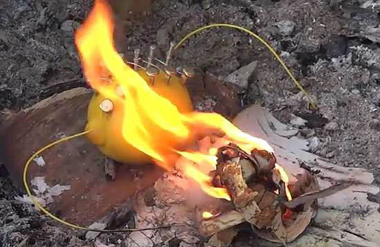 lemon-fire-1