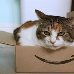 Amazon(アマゾン)が注文金額2,000円以下の配送料を有料化したことによる影響