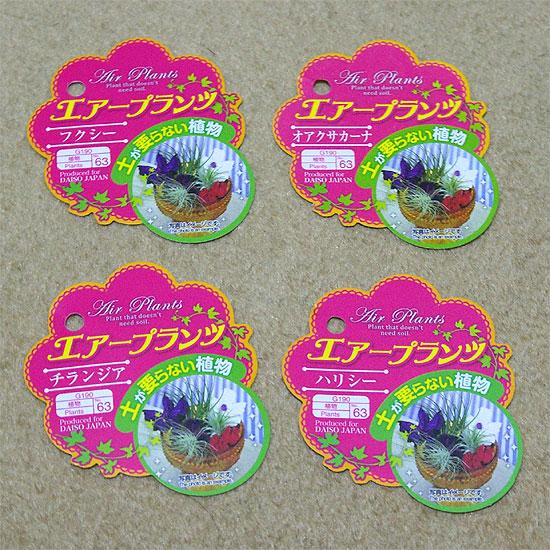 daiso-airplants-2