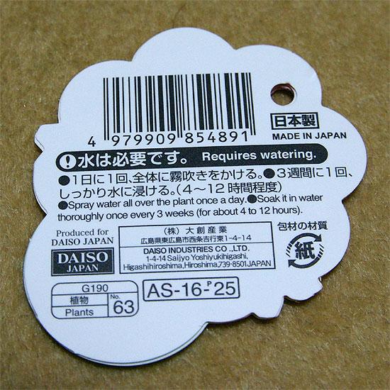 daiso-airplants-3