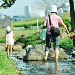 多摩川水系でガサガサ(タモ網で魚採り)するのは犯罪!? 外来種を放流することの是非