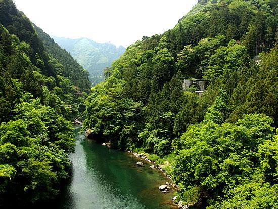 tama-river-fishing-2
