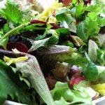 食糧危機と菜食主義 ヴィーガンやベジタリアンと肉食者にとって良い落とし所はあるか?
