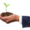 種苗法改正案で得するのは農家ではなくグローバル企業か?